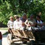 Kutschfahrt in Sibiel